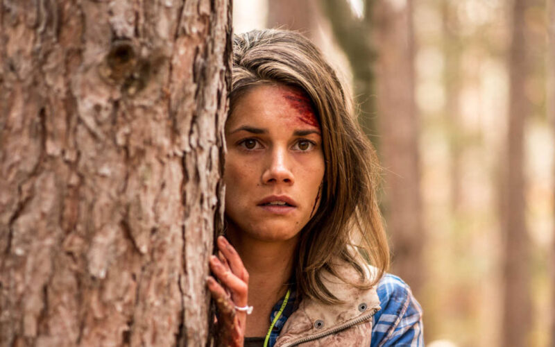 Backcountry (2014) by The Critical Movie Critics
