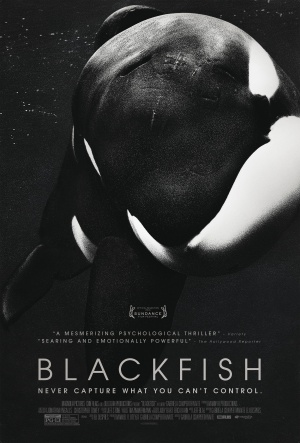 Blackfish (2013) by The Critical Movie Critics