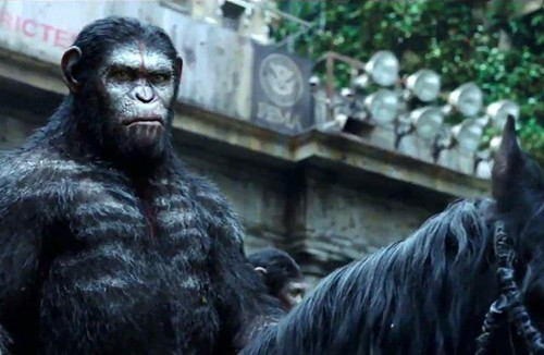 Movie Review:  Dawn of the Planet of the Apes (2014)