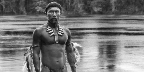 Movie Review:  Embrace of the Serpent (2015)
