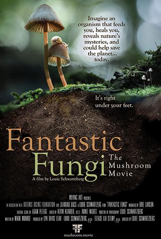 Fantastic Fungi (2019) by The Critical Movie Critics