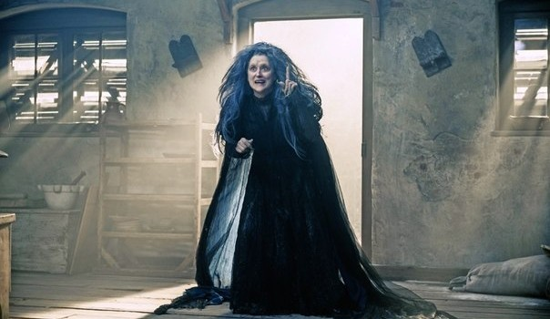 Into the Woods (2014) by The Critical Movie Critics
