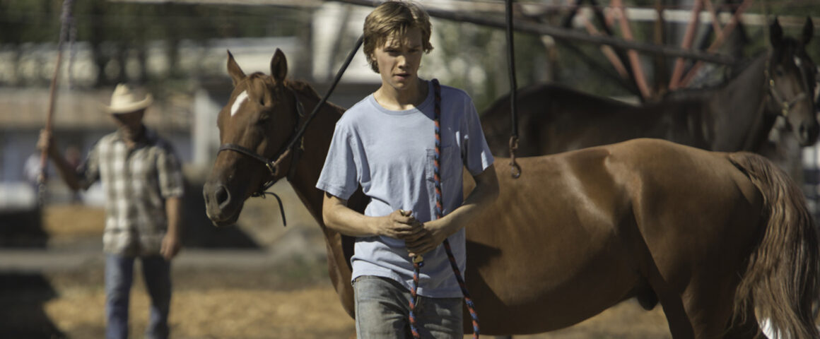 Lean on Pete (2017) by The Critical Movie Critics