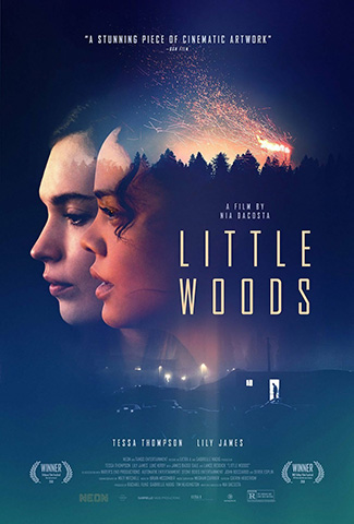 Little Woods (2018) by The Critical Movie Critics
