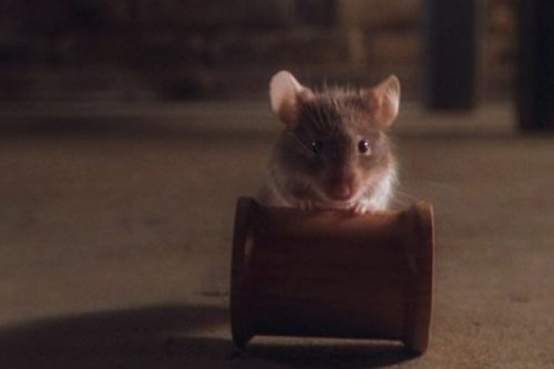 Mr. Jingles – Top 10 Movie Rodents