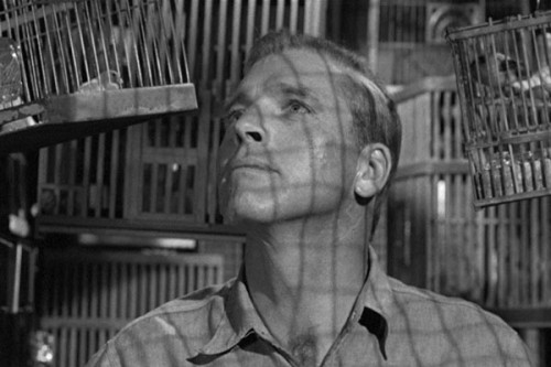 Robert Stroud – Top 10 Movie Convicts