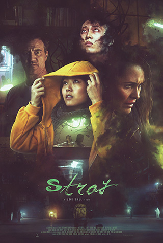 Stray (2019) by The Critical Movie Critics