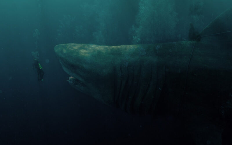 The Meg (2018) by The Critical Movie Critics