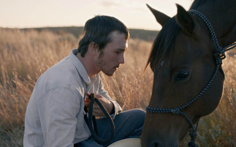 The Rider (2017) by The Critical Movie Critics