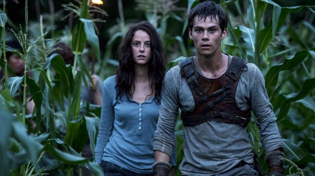 The Maze Runner (2014) by The Critical Movie Critics